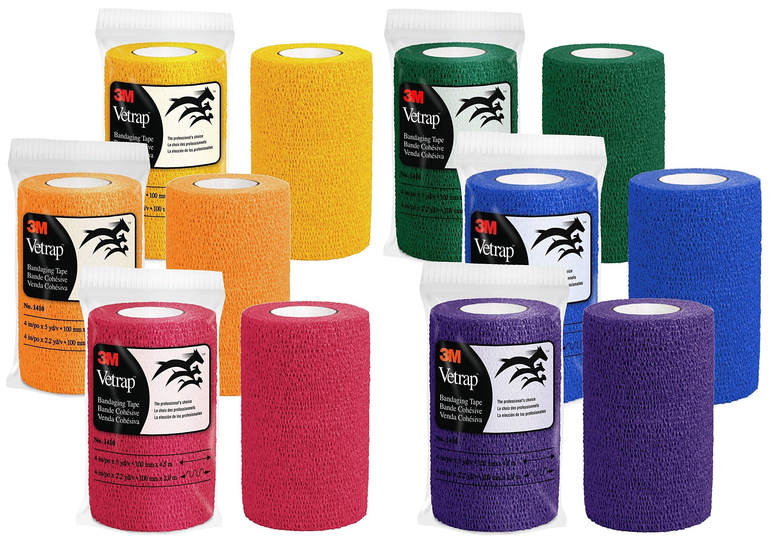 3M Vetrap 4'' Bandaging Tape 4''x 5 Yards, Rainbow Colors (Rainbow 24-Pack)