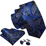 Barry.Wang Paisley Ties Blue and Gold Handkerchief and Necktie Set