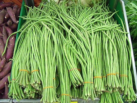 Amazon.com: Stonysoil Seed Company Asian Heirloom Yard ...