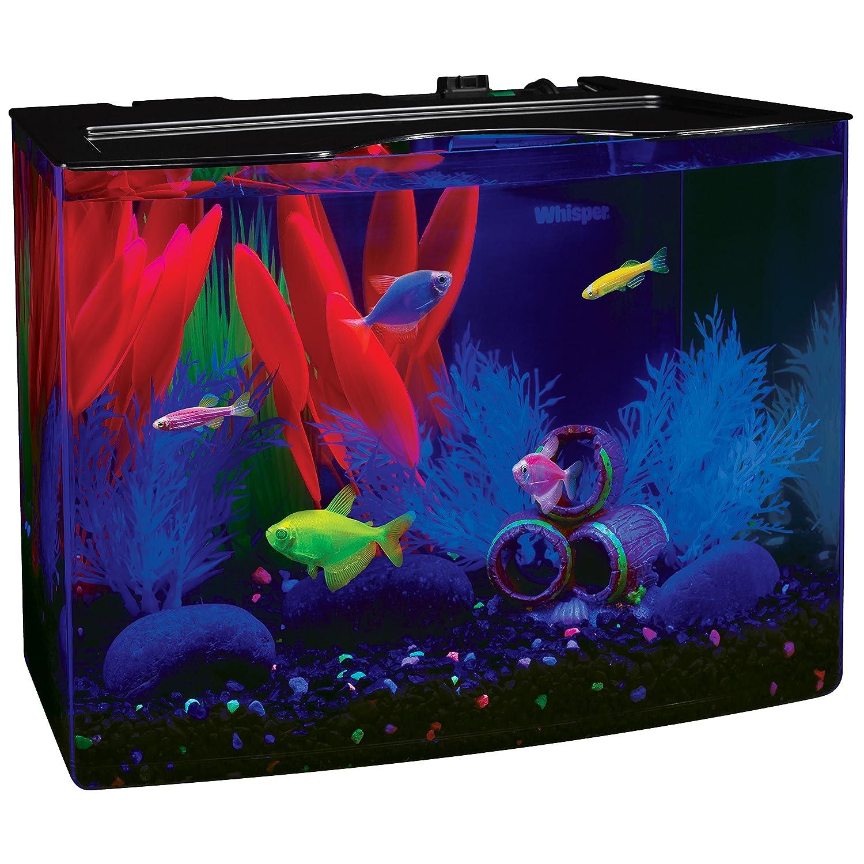 Amazon GloFish 3 Gallon Aquarium Kit w Cover Frame LEDs