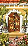 A Not So Model Home (An Amanda Thorne Mystery Book 2)