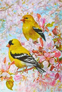 Carson Home Accents FlagTrends 48843 American Goldfinch Classic Outdoor Large Garden Flag