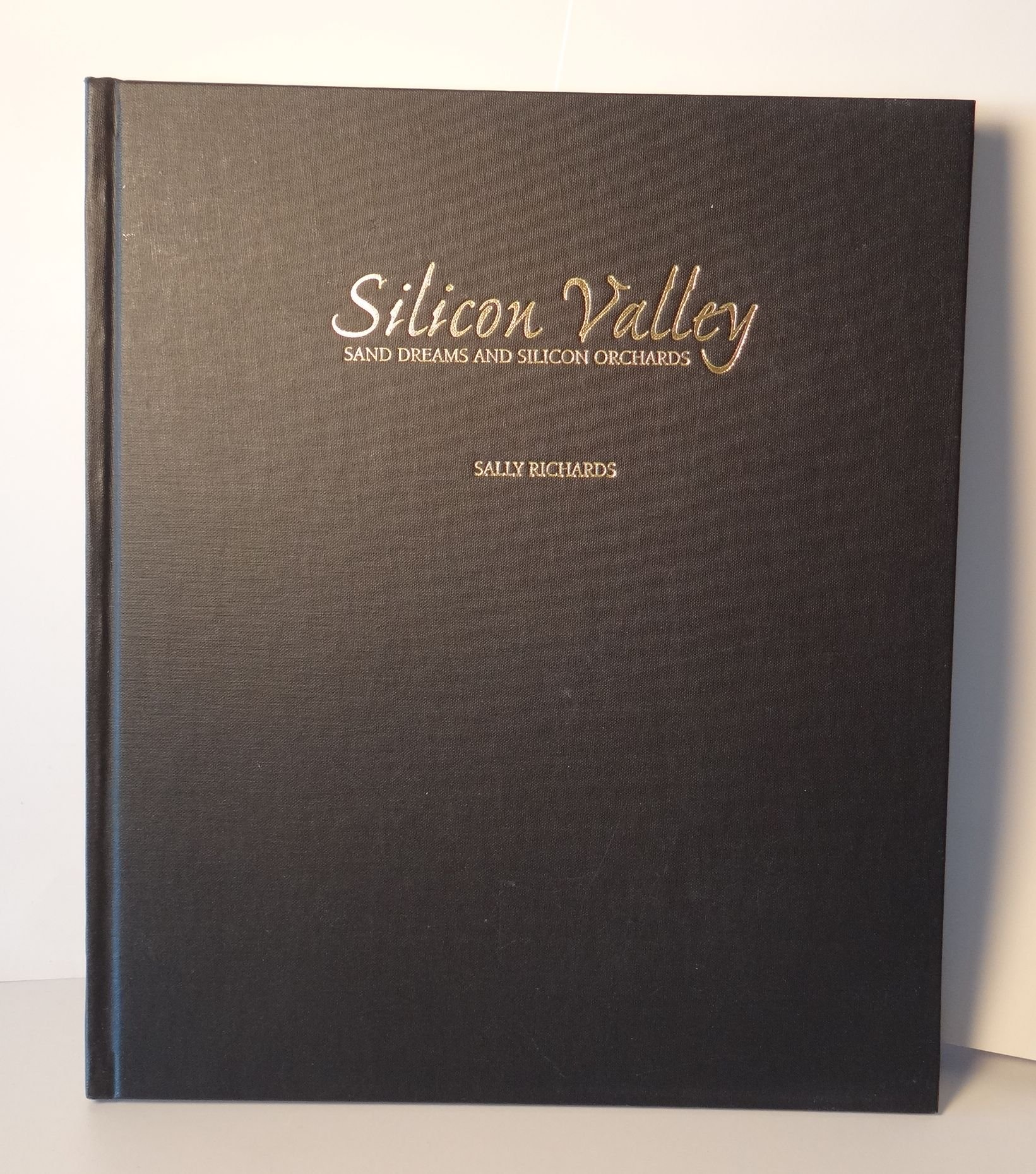 Silicon Valley : Sand Dreams & Silicon Orchards PDF