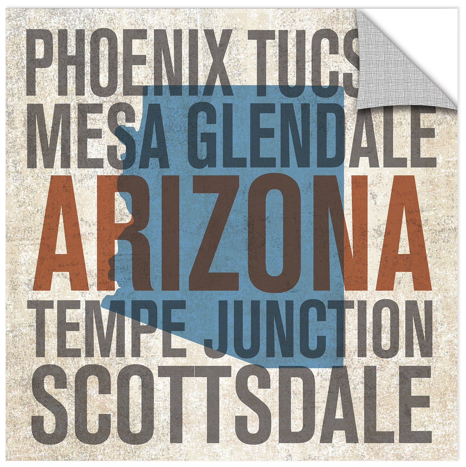 Michael Mullan Arizona Removable Wall Art Mural 18X18