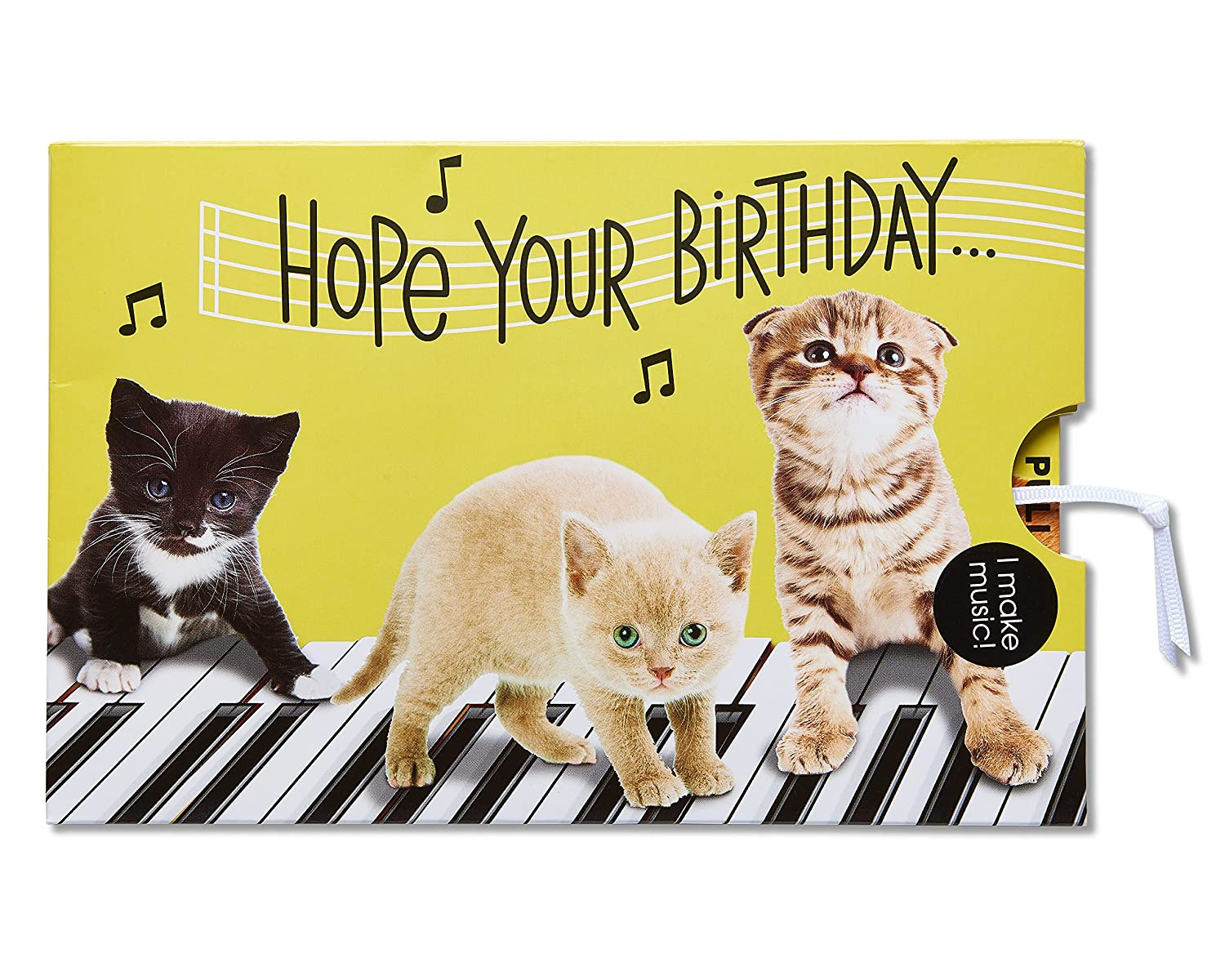 Amazon American Greetings Funny Kitten Birthday Card With