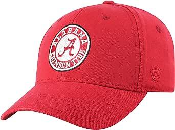 Top of the World Men's Premium Memory Foam Team Icon Hat