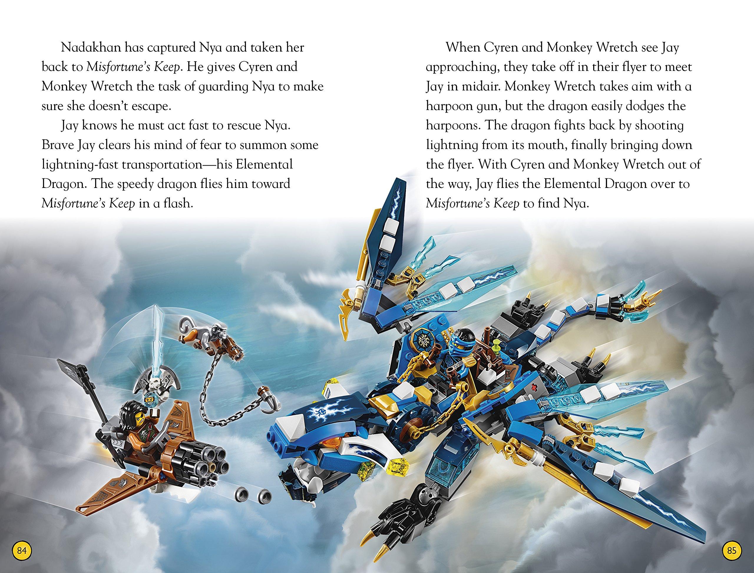 DK Readers L4: Lego Ninjago: Team Ninja: Discover the ...