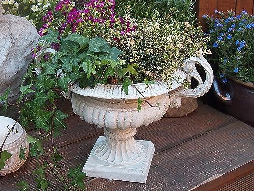 Ánfora, macetas, macetero Jarrón, ánfora Flores, Jardín, Francés, olla, blanco: Amazon.es: Jardín
