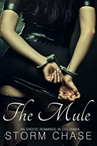 The Mule: An Erotic Romance in Colombia