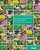 Plantes médicinales de montagne : Connaître, récolter, préparer