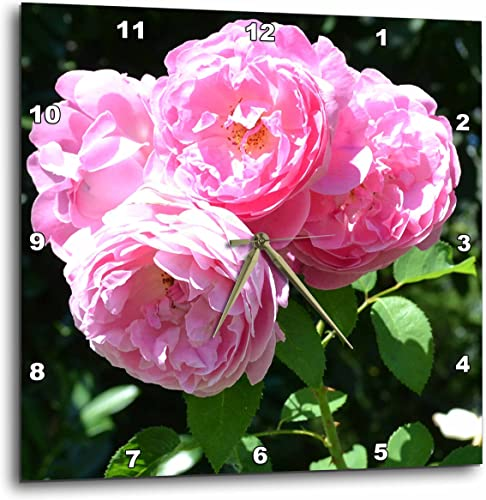 3dRose LLC Beautiful Bouquet of Pink Roses Flowers Wall Clock, 10 by 10-Inch