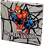 Mundo do Homem Aranha
