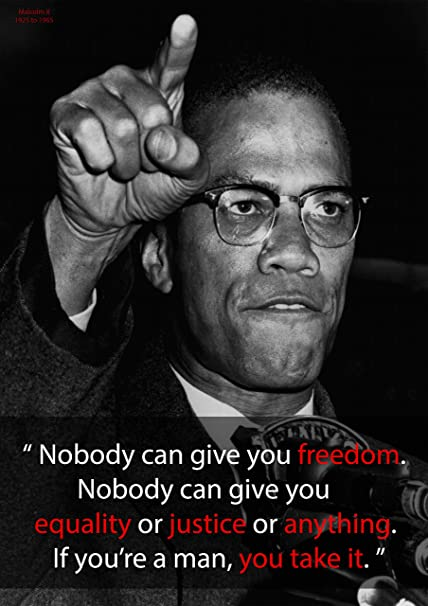 Inspirational Malcolm X Motivational Quotes Poster