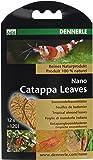 Dennerle Traitement de l'Eau pour Aquariophilie Nano Catappa Leaves