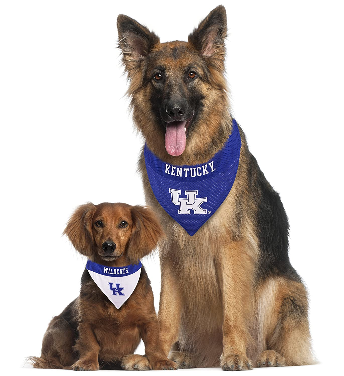 Pets First Collegiate Pet Accessories Large//X-Large Kentucky Wildcats Reversible Bandana