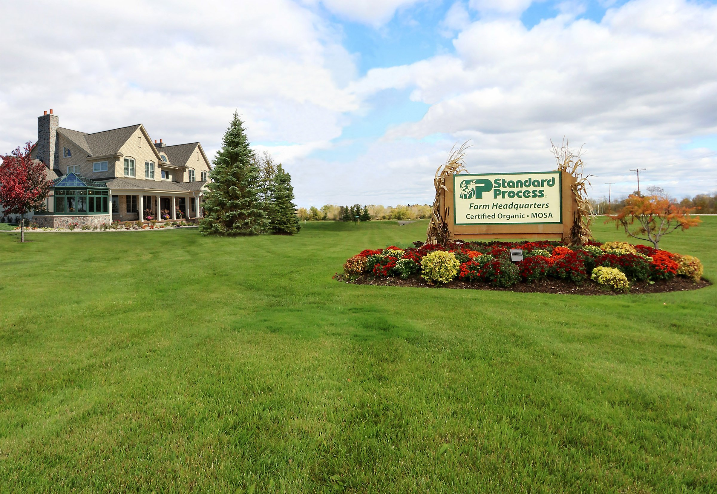 Standard Process - Cellular Vitality - Vitamin B1, B2, B6, Folate, B12, Biotin, CoQ10, Supports Healthy Cellular Processes and Provides Antioxidant Activity, Gluten Free and Vegetarian - 90 Capsules by Standard Process (Image #7)