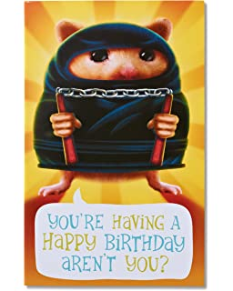 Amazon american greetings funny basket o cute birthday card american greetings funny hamster ninja birthday card m4hsunfo