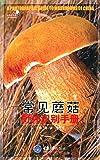 好奇心书系:常见蘑菇野外识别手册