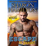 Escape To Sunset: One Night Stand Romance-Hiding From The Mob (Sunset SEALs Book 4)