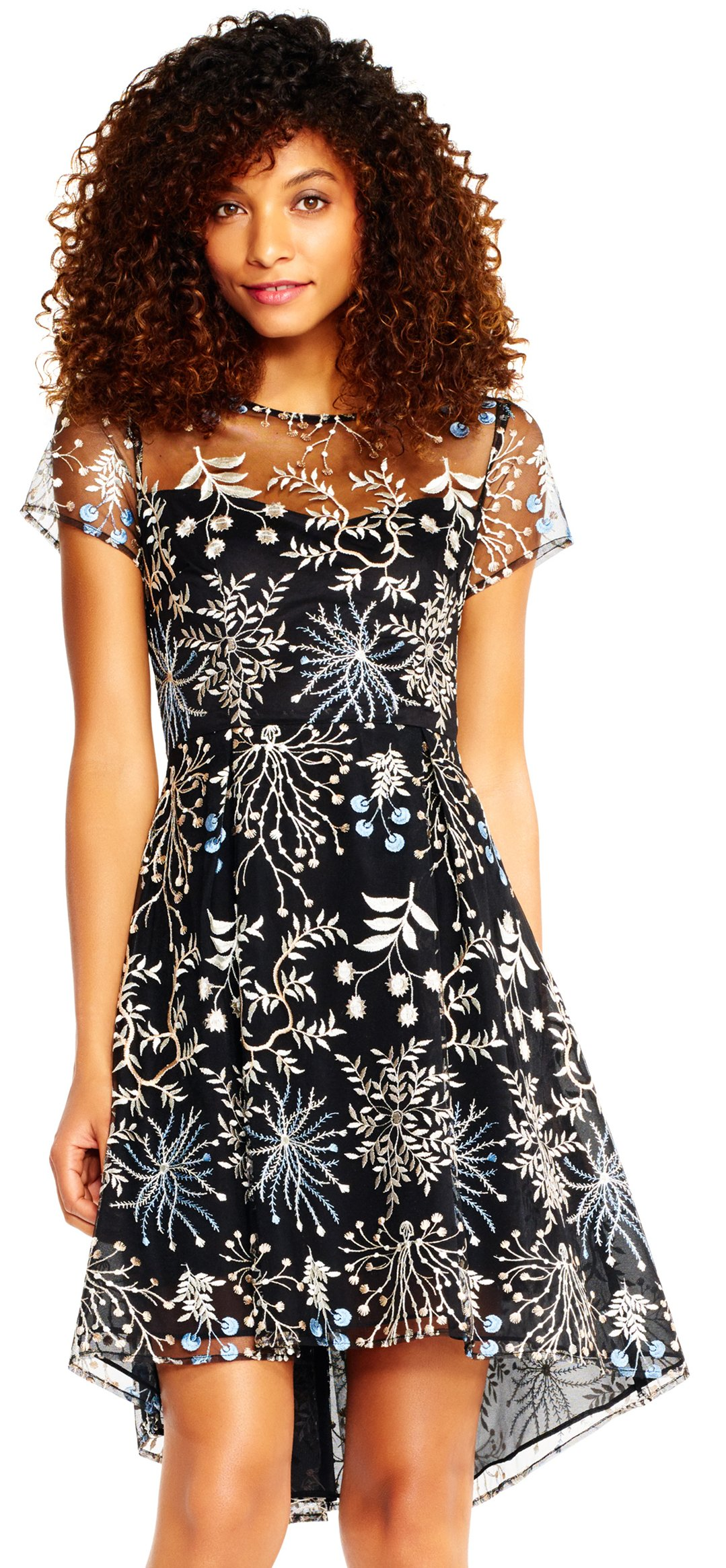 Adrianna Papell Women's Petite Etheral Fit and Flare, Blue/Multi, 8 by Adrianna Papell (Image #1)