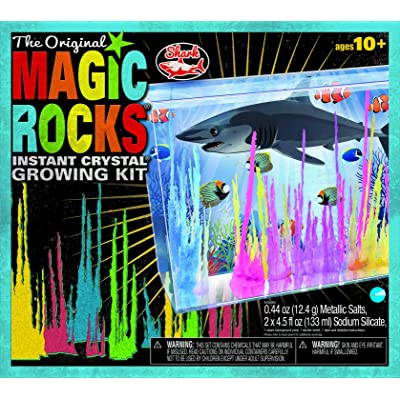 Magic Rocks: Shark: Toys & Games