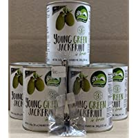 Nature's Charm Young Green Jackfruit in Brine 20 Ounce