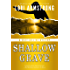 Shallow Grave (Julie Collins Mystery Book 3)
