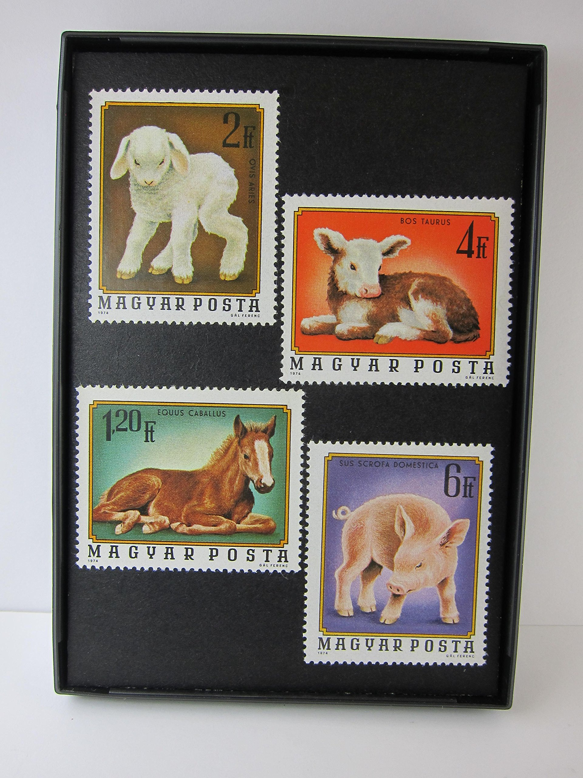 Baby Farm Animal Framed Postage Stamp Art - 3.5 x 5'' Item#F28