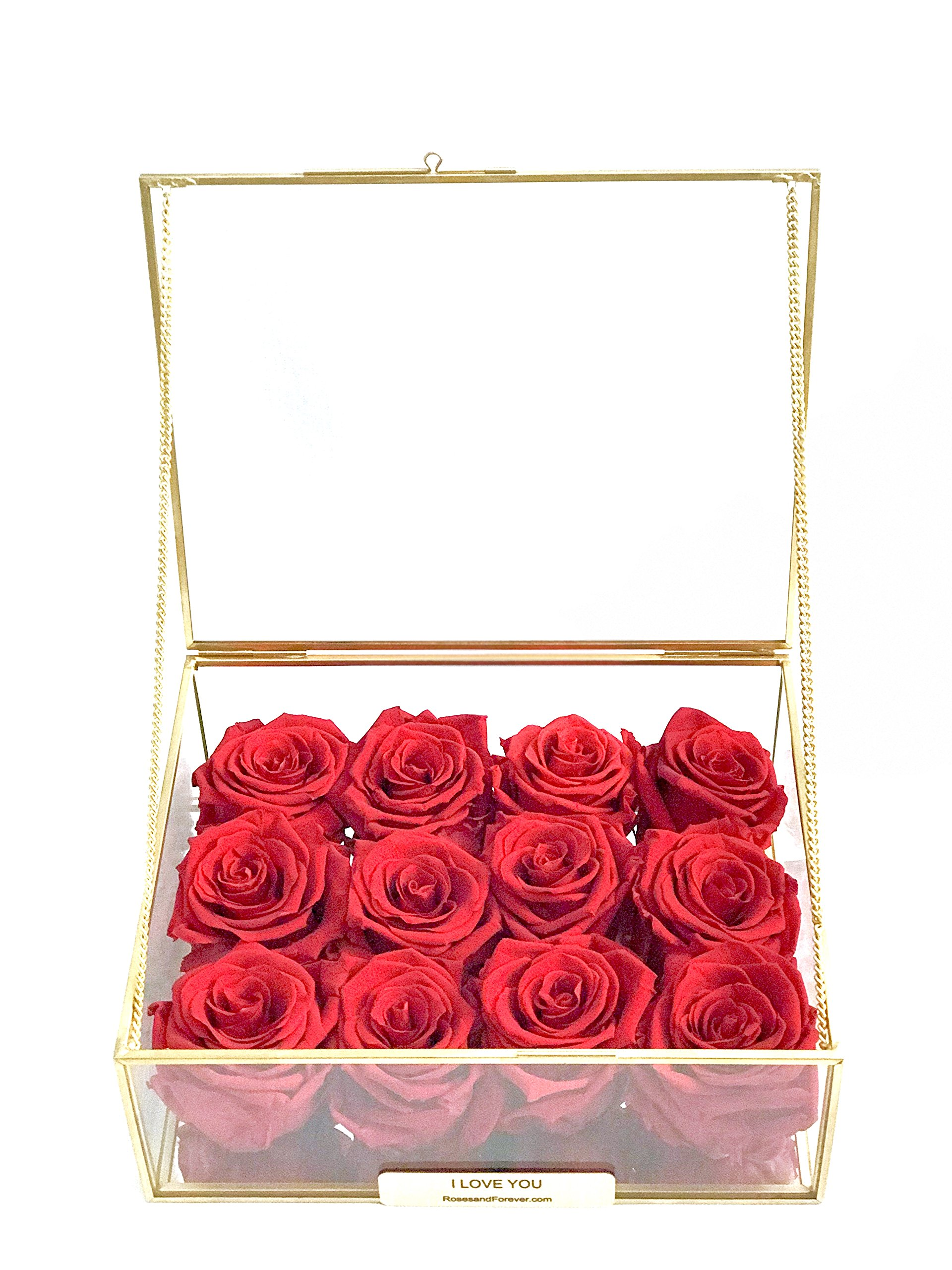 The Treasured ( 12 World's Longest Lasting Roses - RED ) Enclosed in a golden framed glass rectangular prism '' SHE WILL LOVE IT ''