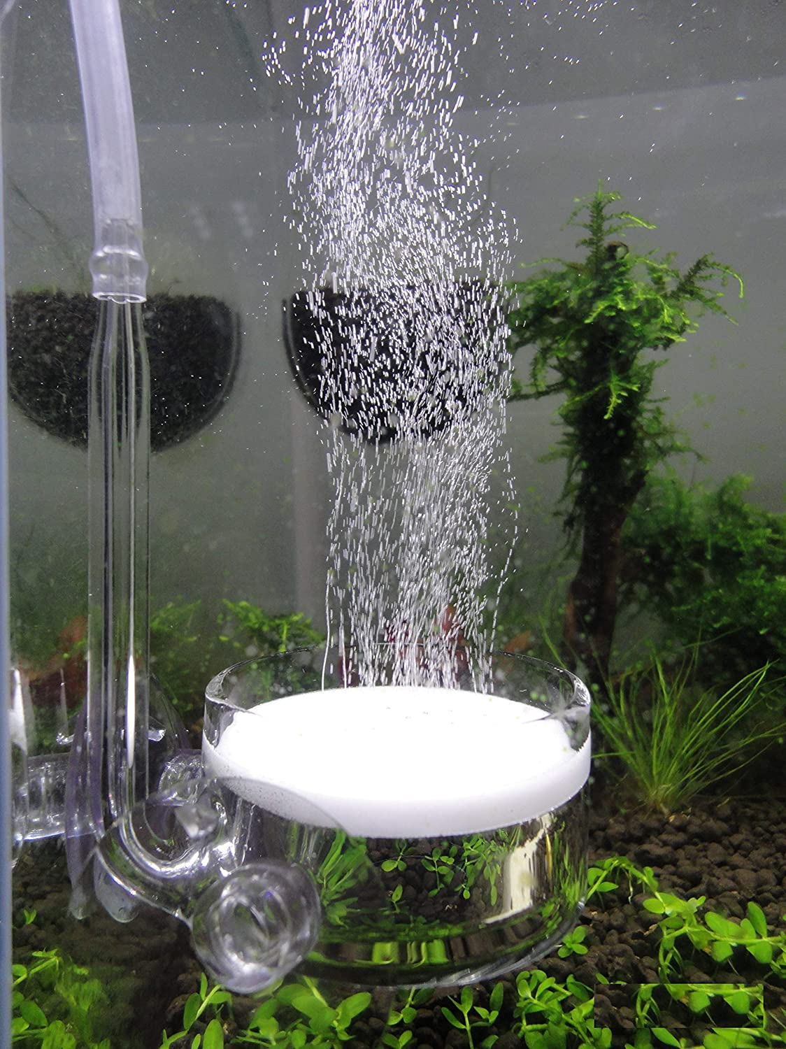JARDLI Pollen Glass CO2 Diffuser with U-Shape Connecting Tube for Aquarium Planted Tank