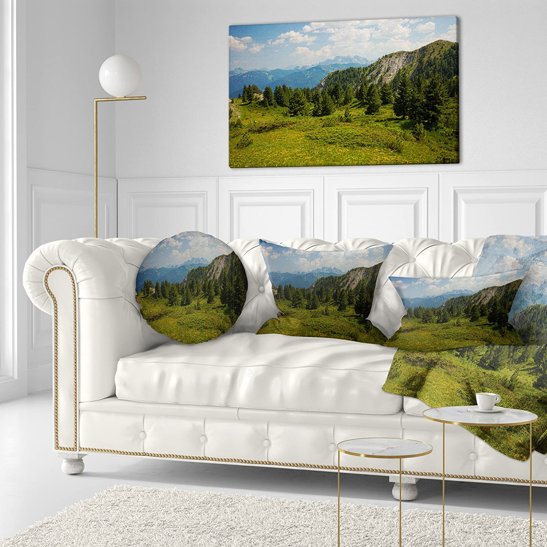 Designart CU8984-12-20 Amazing Visitor Mountains Throw Pillow 12 x 20