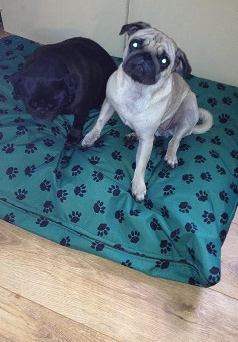 Impermeable Cama Perro Cama, camas para perros, mascotas, dogbed dogbeds, petbed,