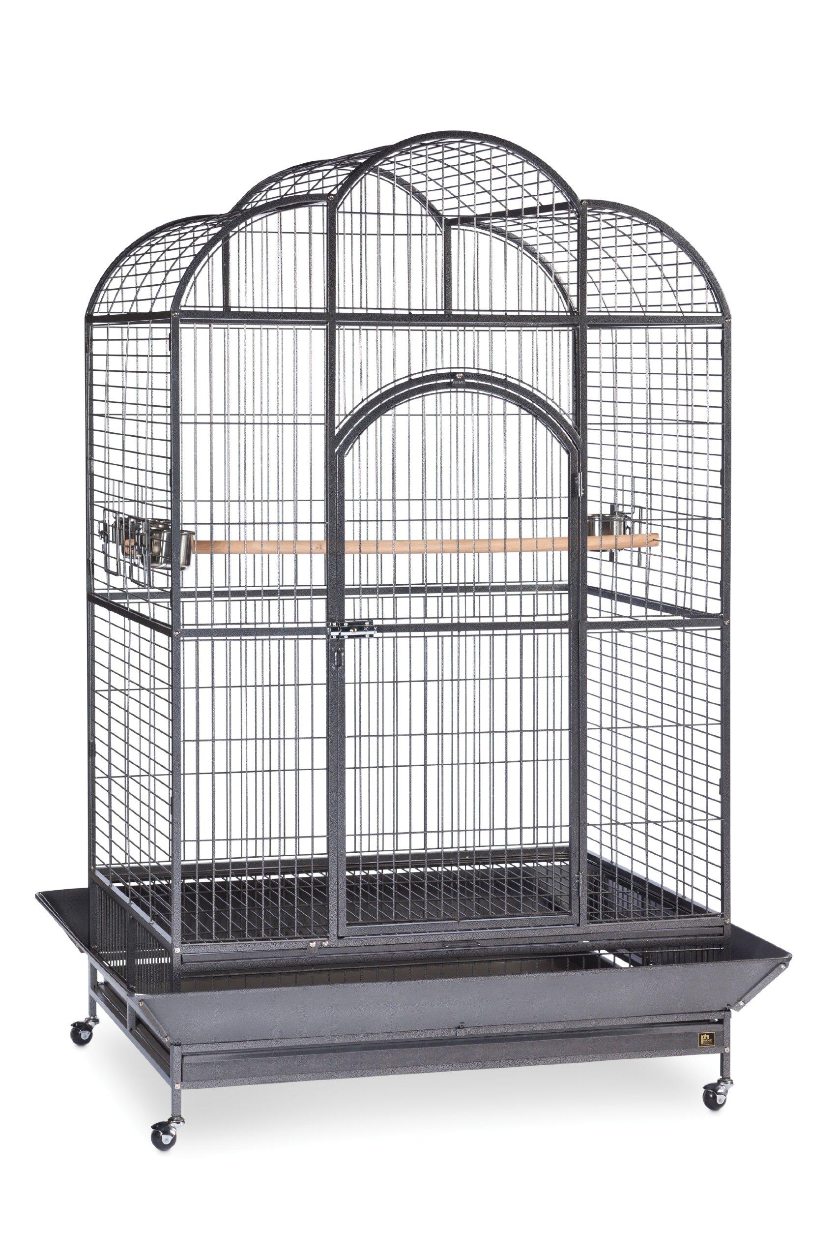 Prevue Hendryx Silverado Macaw Dometop Cage 3155S Silverado 46-Inch by 36-Inch by 78-1/4-Inch