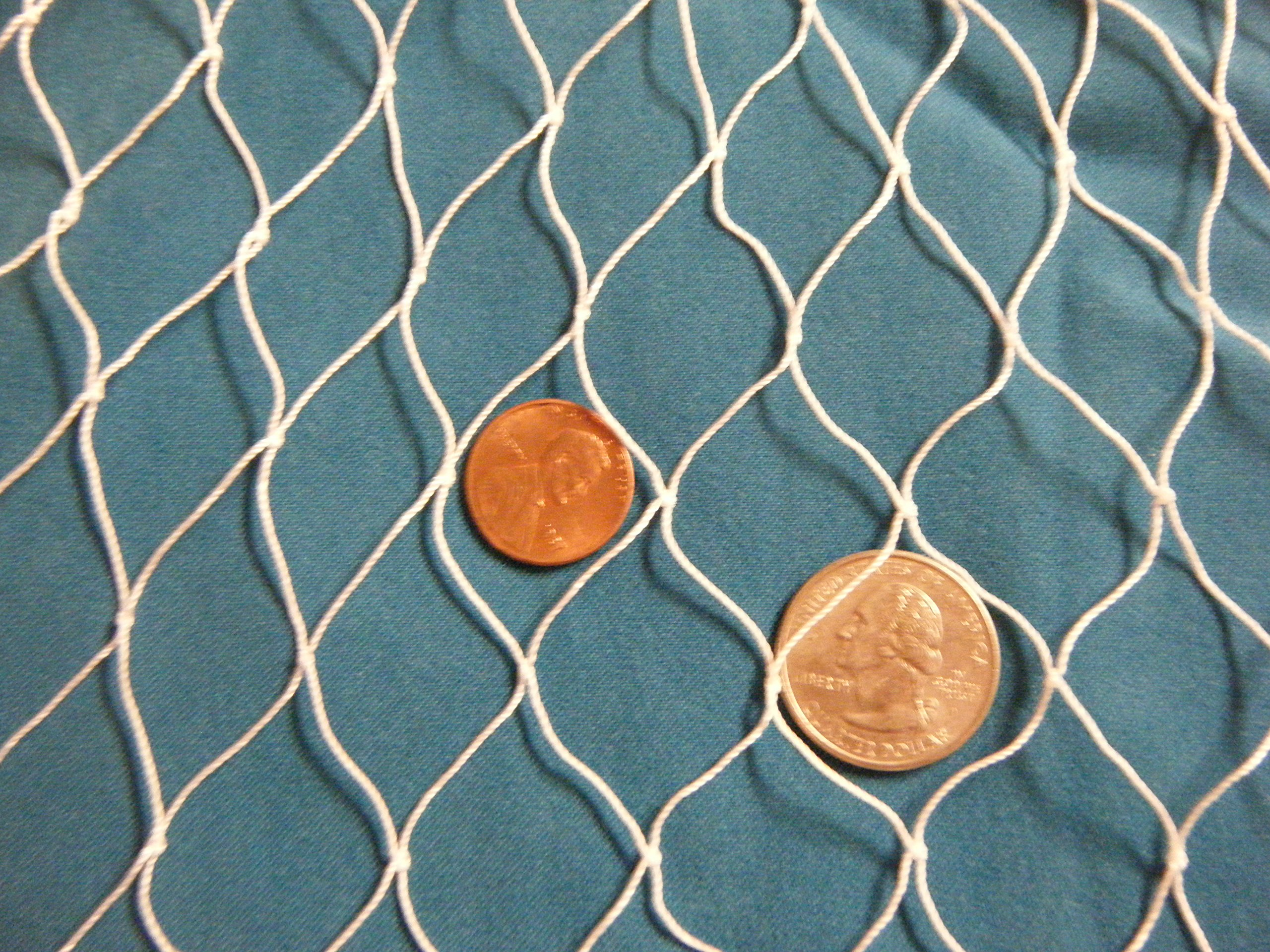 10 X 12 Ft New Fishing Net, Bird Netting, Turkey, Hawks, Predaters, Chicken Coops, COYOTE by Florida Nets (Image #3)