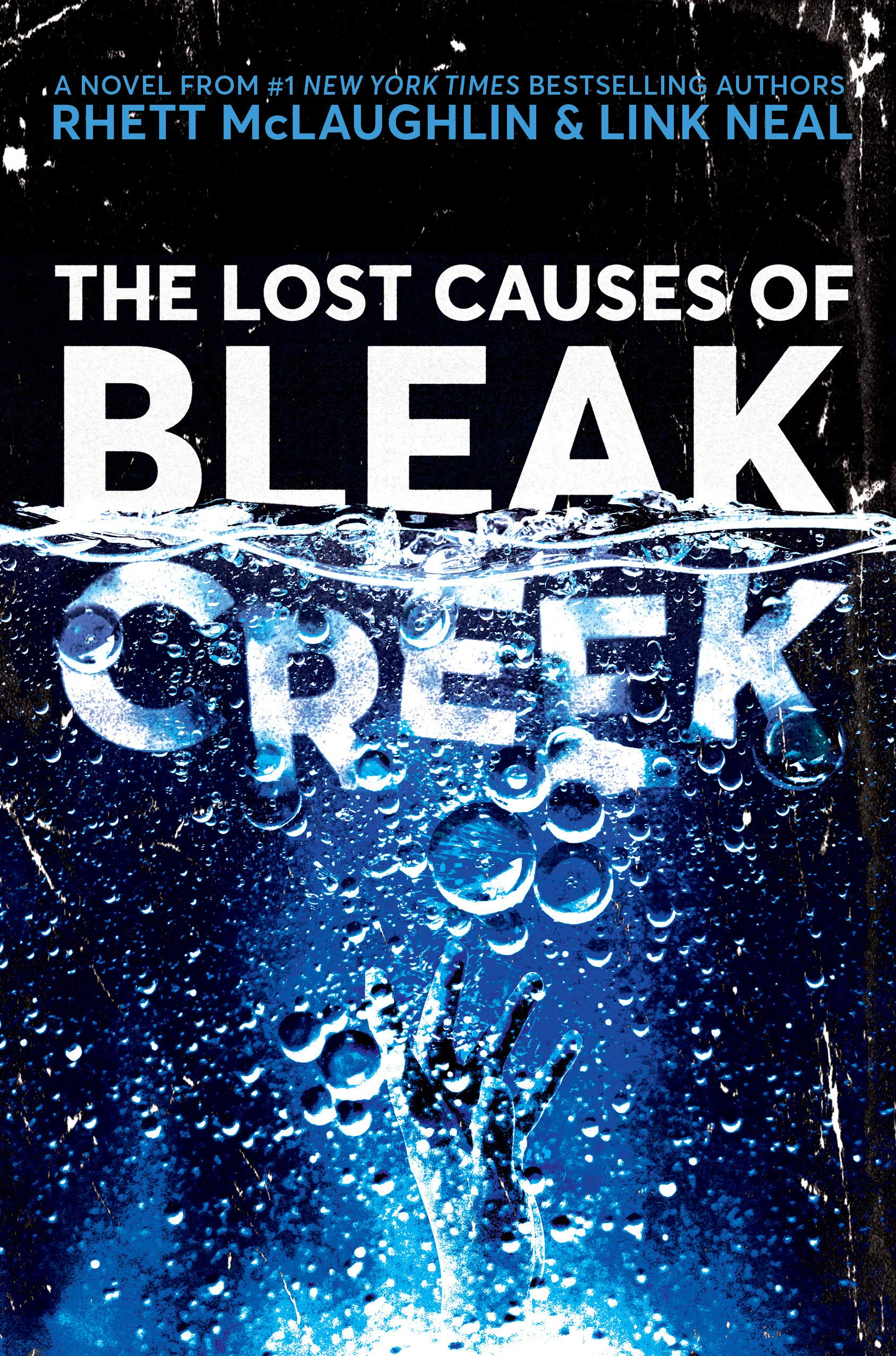 The Lost Causes of Bleak Creek: A Novel by Crown