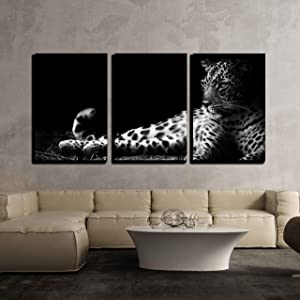 """wall26 - 3 Piece Canvas Wall Art - Black and White Image of a Leopard Lying on The Ground - Modern Home Decor Stretched and Framed Ready to Hang - 16""""x24""""x3 Panels"""