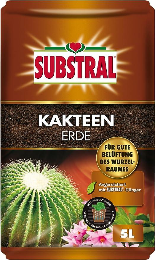 Substral - Tierra para cactus (5 L): Amazon.es: Jardín