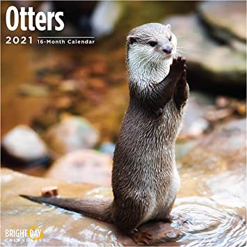 Photos of Otter Calendar 2021