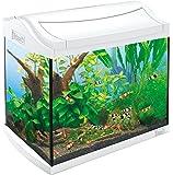 Tetra AquaArt Discovery Line Aquarium-Komplett-Set weiß (inklusive EasyCrystal FilterBox, ideal für die Haltung von Garnelen, Krebse oder tropischen Zierfische), verschiedene Größen