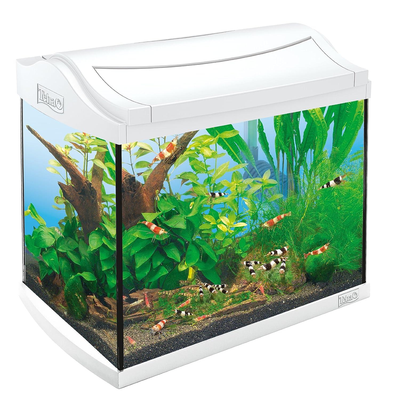 Tetra AquaArt Discovery Line Aquarium-Komplett-Set weiß (inklusive Tetra EasyCrystal FilterBox, ideal für die Haltung von Garnelen, Krebse oder tropischen Zierfische), verschiedene Größen White Edition 211957