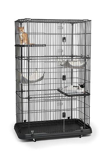 Amazon.com: Prevue Pet Products Jaula especial para gatos de ...