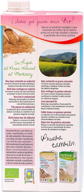 Monsoy - Bebida Ecológica de Arroz Integral - Caja de 4 x 1L ...