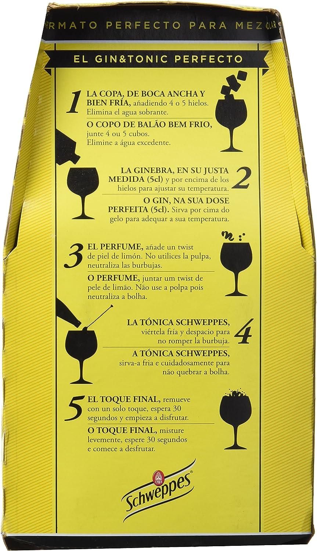 Schweppes Tónica - Pack de 4 x 25 cl - Total: 1 l: Amazon.es ...