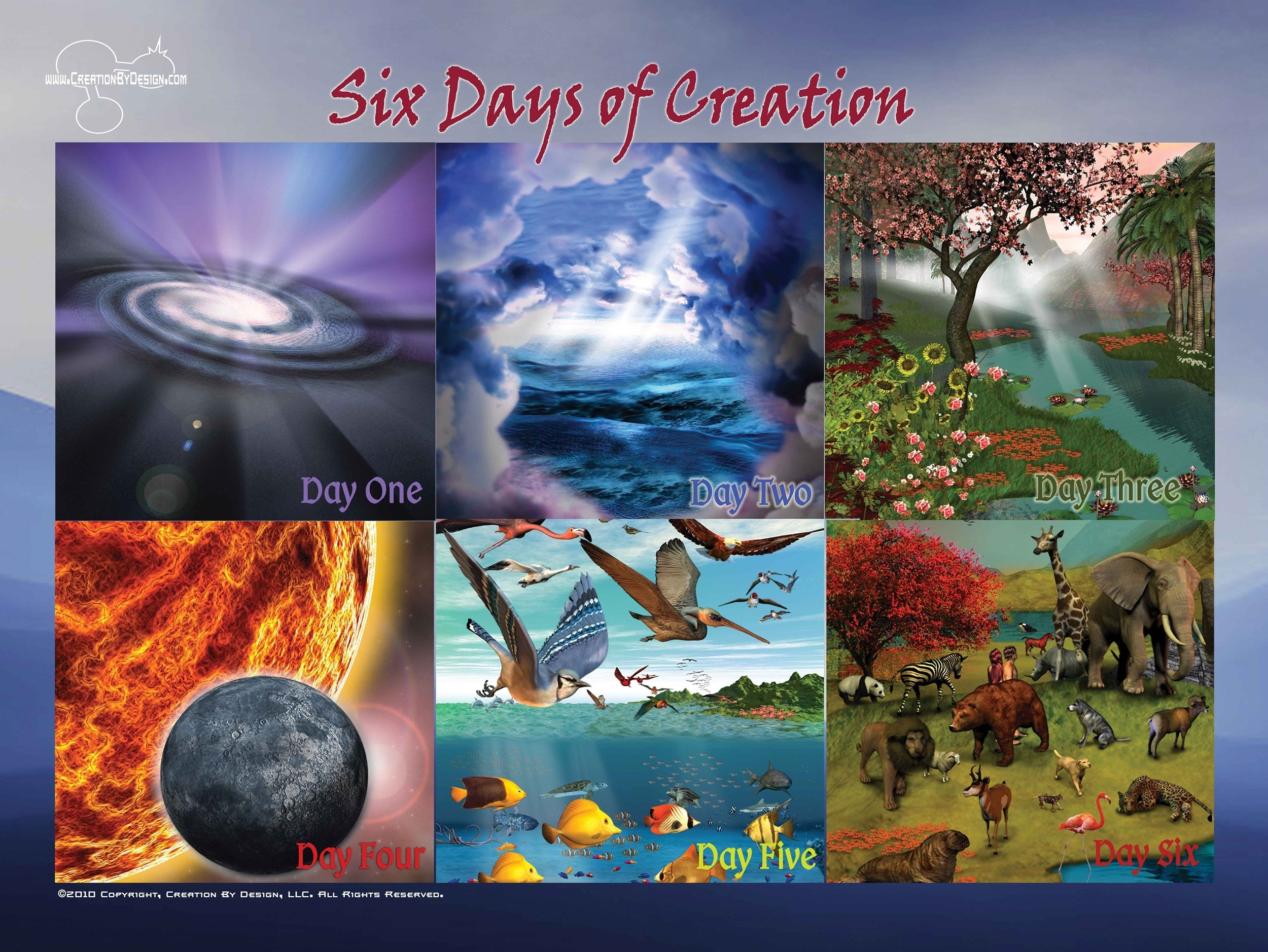 Poster Six Days Of Creation Creation By Design Posters Creation By Creation By Design 0837654629383 Amazon Com Books