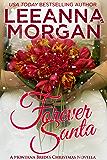 Forever Santa: A Montana Brides Christmas Novella (The Montana Brides Book 5) (English Edition)