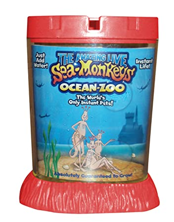 Buy Big Time Toys Sea Monkeys Ocean Zoo Deluxe Kit Set Online At
