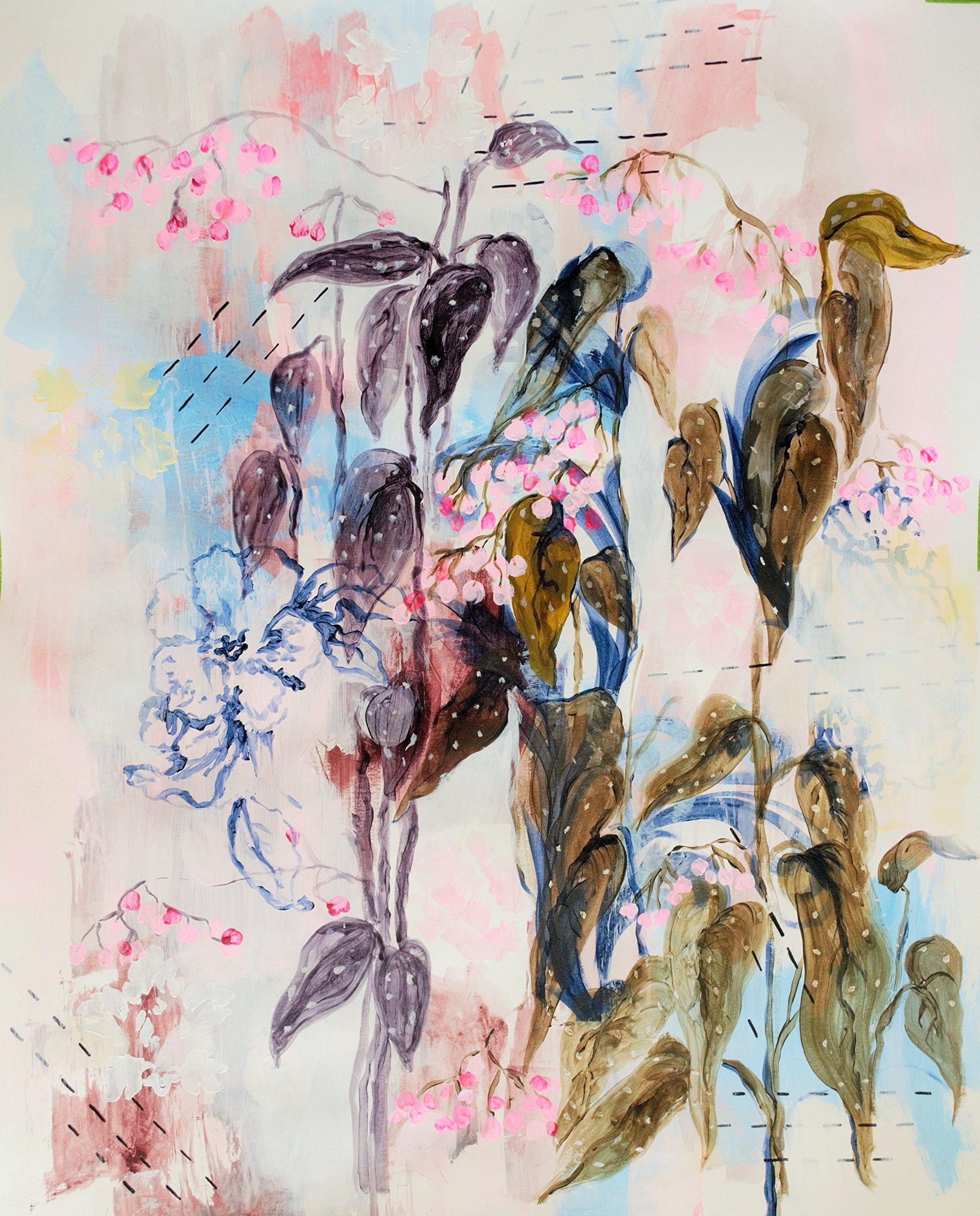 Begonia Maculata by