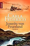 Jenseits von Feuerland: Roman (Die Chile-Trilogie 2) (German Edition)