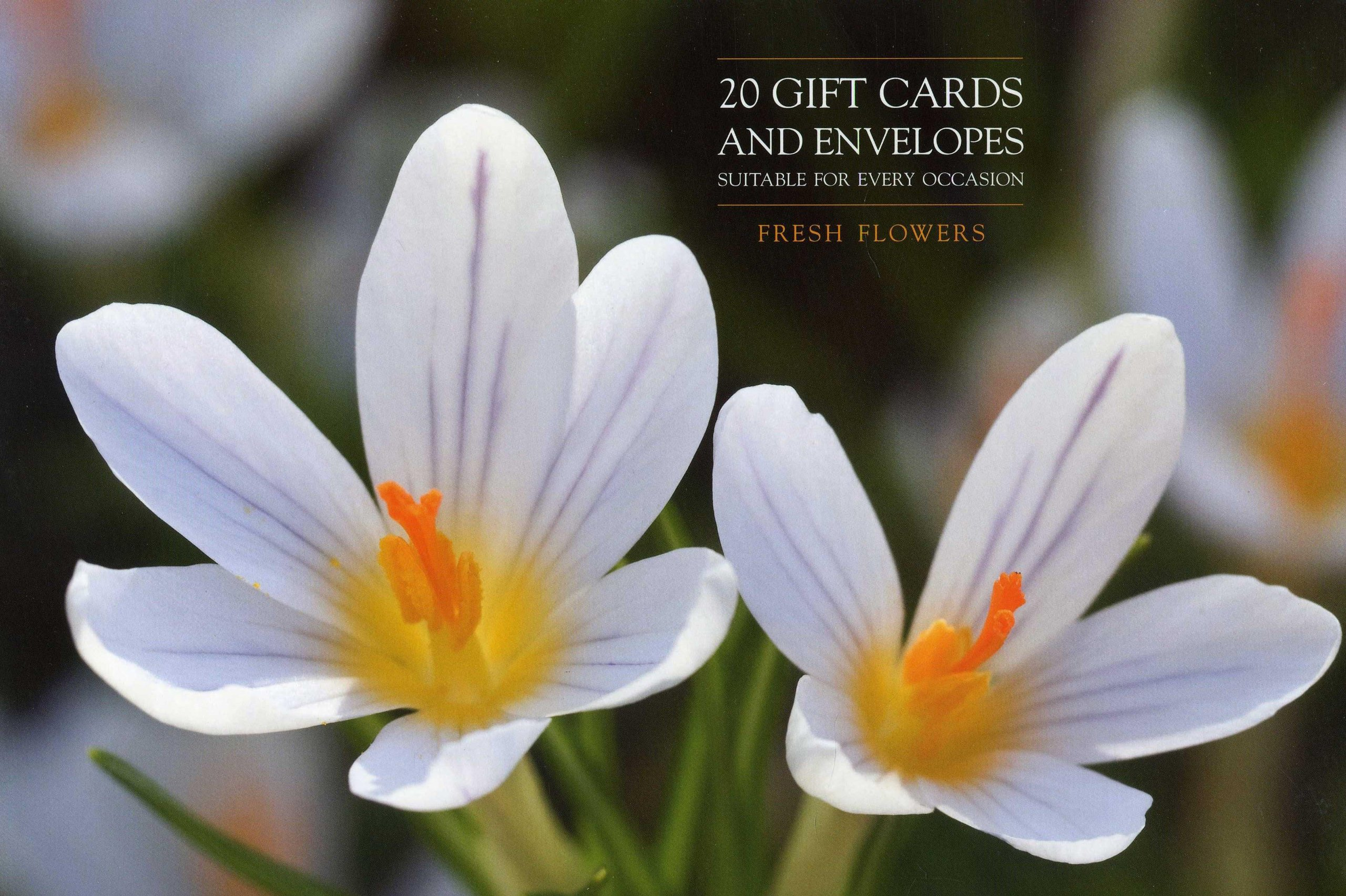 Download Card Box of 20 Notecards and Envelopes: Fresh Flowers: A Delightful Pack Of High-Quality Flower Gift Cards And Decorative Envelopes ebook