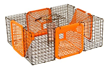 Protoco 19 x 24-Inch Shrimp Trap